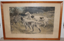 Large hunting dog print